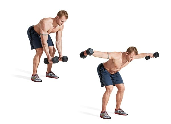Vung tạ ngang- Reverse Dumbbell Flyes