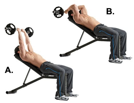 EZ Bar Triceps Extension