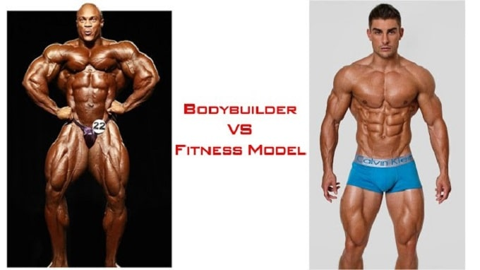 Chúng tôi sẽ làm một sự so sánh thương đối về hình dang nhóm cơ của các BodyBuilder và Fitness Model cho các bạn dễ hình dung