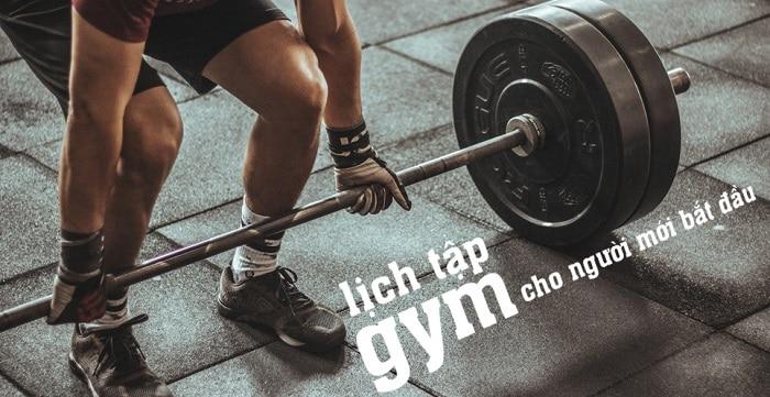 tập gym cho người mới bắt đầu như thế nào