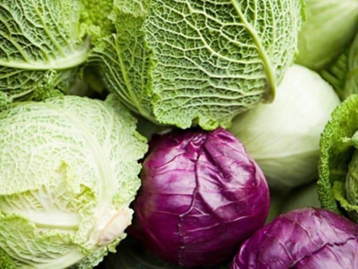 Rau bắp cải luộc là món ăn yêu thích trong thực đơn giảm cân với rau luộc