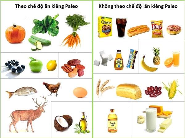 Thực phẩm nên và không nên ăn trong Paleo Diet.