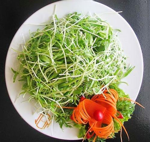 salad cho người giảm cân
