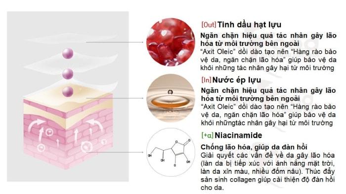 innisfree jeju pomegranate revitalizing foam cleanserreview